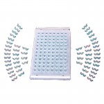 lab accessories,laboratory seals,laboratory sealing films,microplate sealing films,excel sealing films india,PCR sealing film,PCR plate sealing films,Thermal Seal,Real Time PCR Sealing film,Cell culture plates sealing films,Elisa sealing film,serological plate sealing films,multiwell plate sealing films,PP Sealing films,opti clear selaing films,optical clear selaing films,hydrophobic films,50um sealing films,aluminum sealing films,deep well plate sealing films,cold storage sealing films,manufacturer of laboratory sealing films india,Moxcare lab accessories,lab supplies india