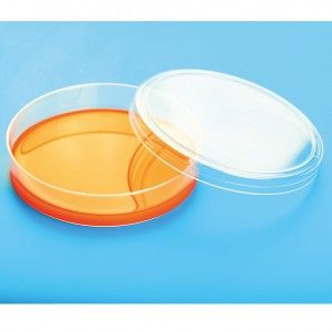 petridish,petri dish 90mm,culture dish,culture plate,cell culture dish,polystyrene dish,adhesion cell dish,,suspension cell dish,petri dish 90mm Individual pack,petri dish 90mm, 10/packing,petri dish 90mm eto sterile,petri dish 35mm,petri dish 60mm,petri dish 70mm,petri dish 100mm,,petri dish 90mm gamma sterile ,petri dish 90mm ethylene oxide, sterile,petri dish 90mm eto sterile,individually packed petri dish ,square petri dish,,grid petri dish,high quality petri dish ,90x15mm petri dish,100x20mm petri dish,,90x20mm petri dish,disposable petri dish,disposable petridish,,disposable petri dish 90mm,autoclavable petri dish,petri dish ambala,petri dish India,petri dish Delhi,petri dish Mumbai, petri dish Bengaluru,petri dish Bangalore,petri dish Hyderabad,petri dish bhopal,petri dish Indore,petri dish Ludhiana,petri dish jalandhar,petri dish Haryana,petri dish Gurgaon,,petri dish mysore,petri dish Chennai,petri dish cochin,petri dish India,petri dish noida,,petri dish manufacturer in India,petri dish 90mm manufacturer in India,disposable petri dish manufacturer in India,petri dish sterile manufacturer in India,